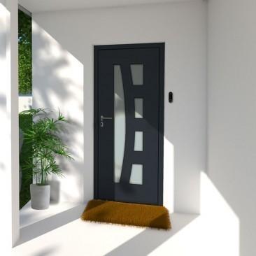 Puerta de entrada RINIA en...